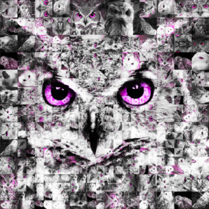 ugle_pink
